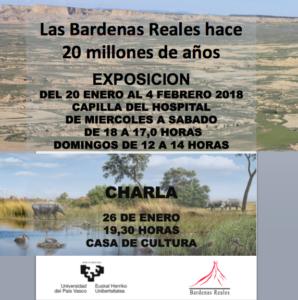 Bardenas Falces